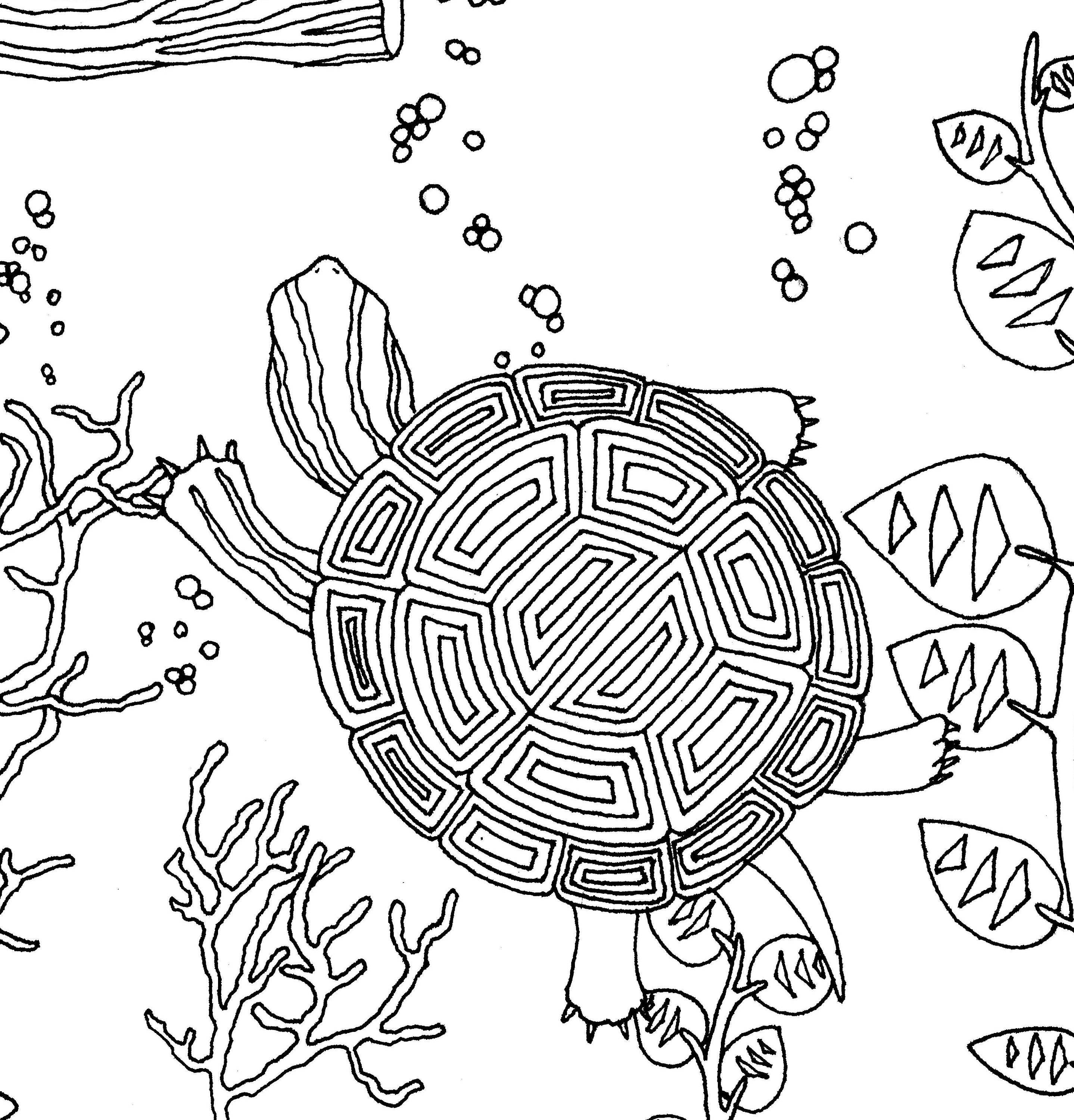 turtles i coloring page coloring instant download printable