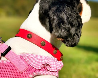 dog collar/leather collar/red/red collar/handmade/dog love/pet/dog gift/gift/dog/collar/pet lover/pet collar/exclusive/design collar/leather