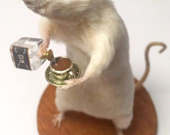 Taxidermy Mouse with GIN and teacup ~ oddities, curio, curiosities