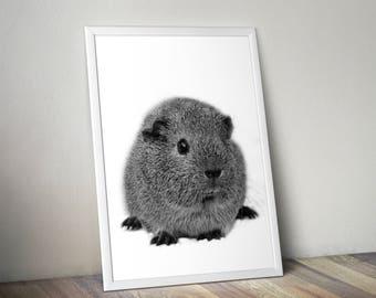 Guinea pig, animal print, cute animal print, nursery print, peekaboo animals, cute nursery print, nursery animal print, nursery decor