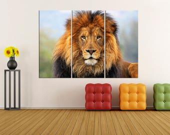 lion wall art lion canvas print for living office , lion photo print extra large wall art, lion canvas art, modern art 10s80