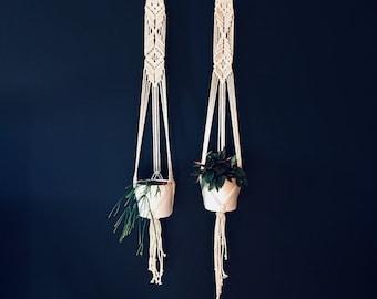 Darcey and Dina Macrame Plant Hangers