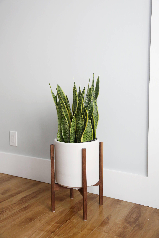 medium mid century modern cylinder planter with walnut or. Black Bedroom Furniture Sets. Home Design Ideas
