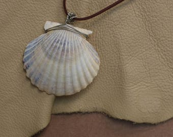 Medium-Sized Wire Wrapped Sea Shell Necklace