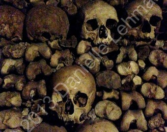 Paris Catacombs - Bones - Digital Download