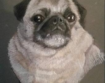 Pet Portraits in Pastels