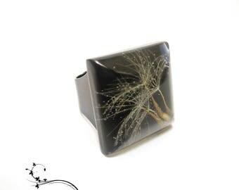 Ring of dandelion seeds
