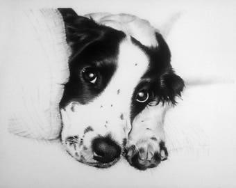 Black and White illustration - Charlie