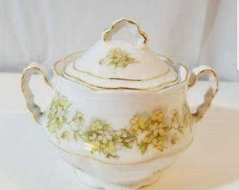 Z S C Bavaria Irma Sugar Bowl Covered Gold Trim Double Handle