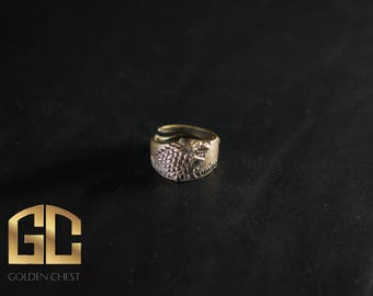 Game of Thrones. Ned stark. Jon Snow. Sansa Stark.  Arya Stark. Ring Cosplay