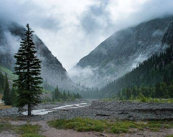 Colorado Nature Photography, Forest Decor, Foggy Valley, Epic Landscape Photo, Forest Photography, Scenic Wall Decor, Pine Tree, River