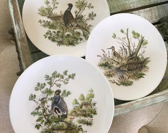 Schumann Bavaria Arzberg Germany Golden Crown E&R Collectable Bird Plates Pheasant Game Bird Series TYCAALAK