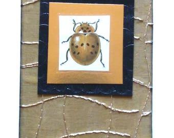 gold ladybug card