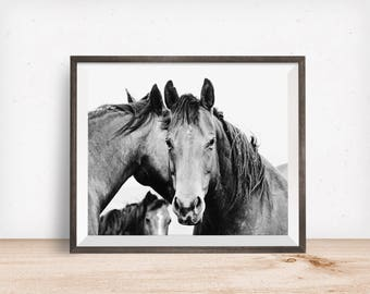 Black and White Equestrian Photography, Strong Western Horses, Western photography, Physical Equine Print
