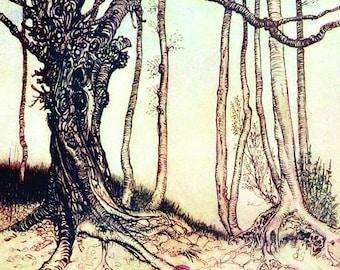 Red Riding Hood in The Woods, Arthur Rackham, Vinatge Art Print