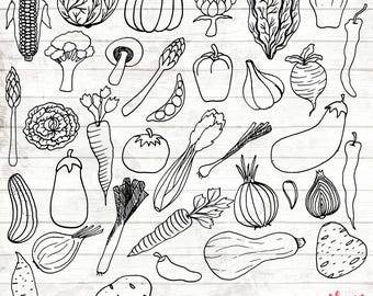 Vegetable Clipart - 35 Hand Drawn Veg Cliparts - Veg Logo Art - Veg Logo Elements - Veg vector - ACGABW36