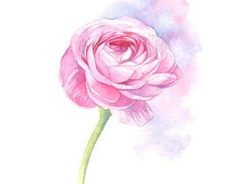 Ranunculus print of watercolour painting, Flower print, ranunculus watercolor painting print, wedding flowers print, 5 by 7 size, R22717