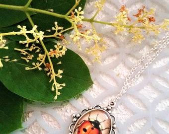 Ladybug pendant necklace - ladybug jewelry - ornate glass covered beetle necklace - ladybird necklace - ladybird jewelry - ladybug gift