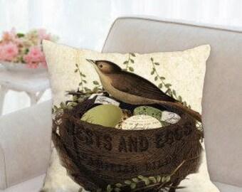 Birds Nest & Eggs Pillow