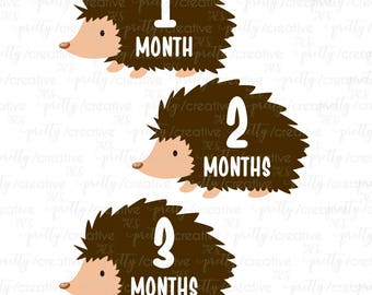 Month by Month Baby Stickers - Hedgehog Cutout