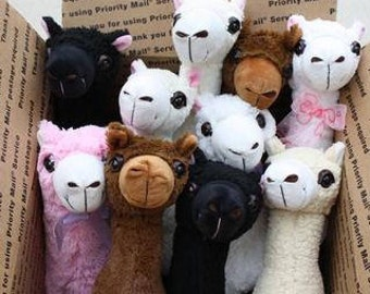 PacaBuddies Stuffed AlpacaToys
