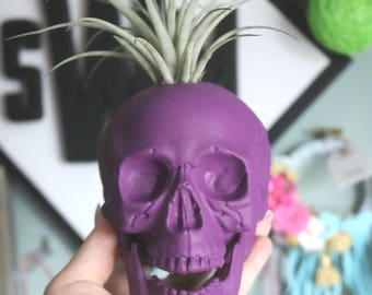 Custom Large Skull Planter with Air Plant Room Decor- Halloween Decor- Home Decor- Color Skull- Desk Decor- Birthday Gift- Christmas Gift