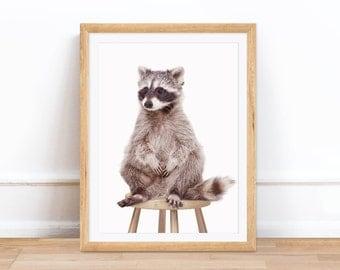 Raccoon Wall Art Print, Raccoon Print, Nursery Wall Decor, Animal Portrait, Woodland Animals Print, Nursery Decor, Baby Raccoon Printable