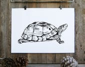 Turtle Gift, Turtle Print, Turtle Poster, Turtle Lover Gift, Nursery Decor, Coloring Pages, Teen Decor, Nature Art, Kids Room Decor