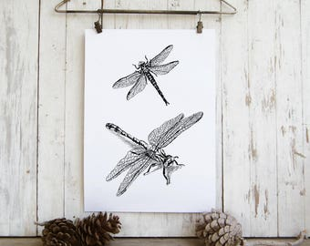 Bedroom Decor, Dragonflies Printable, Dragonflies Wall Hanging, Insects Print, Dragonfly Wall Art, Nature Wall Decor, Gift Under 10