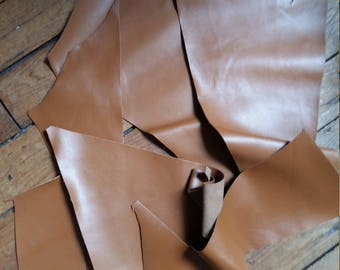 Scraps of camel leather