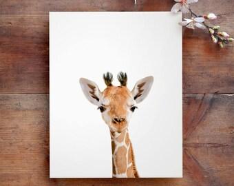 Safari nursery art, Giraffe print, PRINTABLE art, Safari animals wall art, Baby giraffe, Safari nursery decor, Safari theme,Nursery wall art