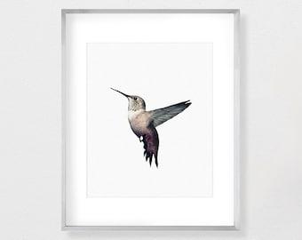 Hummingbird Print, Hummingbird Art, Hummingbird Wall Art, Hummingbirds, Hummingbird, Watercolor Print, Instant Download, Printable, Nursery