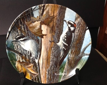Vintage Kevin Daniel Plate The Downy Woodpecker Knowles China Collectible