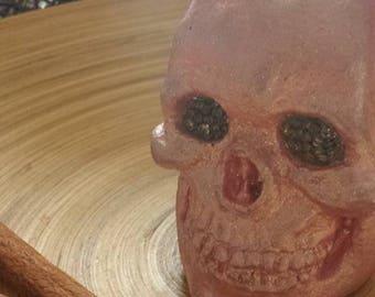 Skull, small skull, plaster sculpture