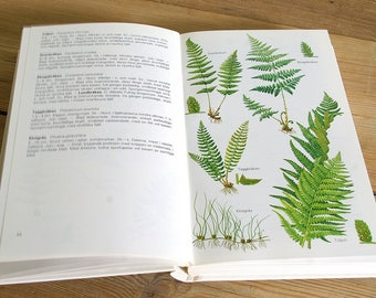 Vintage flora book guide.Vintage wild flower field guide.Vintage flora illustration.Book pages flowers.Collage.Flower wall decor.plants fern