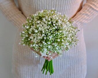 Gypsophila, Gyp, Baby's breath bridesmaid bouquet