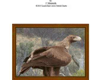 WEDGETAILED EAGLE - Cross Stitch Chart