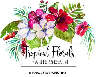 Tropical Flowers Watercolor Clipart Tropics Australian Florals Hawai Clip Art Wedding Invitation Watercolour White Red Magenta