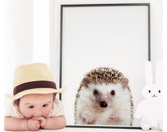 Hedgehog Print, Nursery Animals, Nursery Animal Print, Nursery Printable, Nursery Print, Woodlands Nursery, Animal Print, Nursery Decor