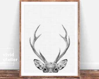Nursery Decor, Printable Gift, Deer Print, Home Decor, Woodland Nursery, Animal Print, Deer Poster, Deer Head, Woodland Animals, Deer Antler