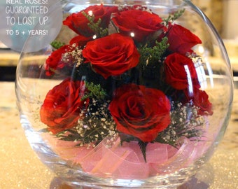 Eternity Roses, Roses, REAL roses, Gifts for her, Gifts for him, Valentines, Anniversary, Wedding, Couple Gifts, Birthday Gifts, Everlasting