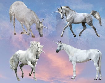 Unicorn Overlays and Special FX