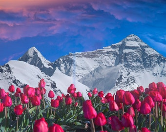 Mountain Overlays
