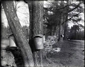 Buckets.  Limited Edition.  Signed Black and White Print.  Printed in the Darkroom from my own Hand-Coated Dry Plate Negative.