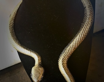 Golden snake choker necklace