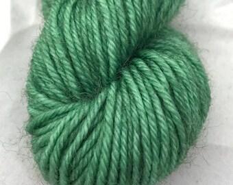 Earth Green - BFL 4 Ply Mini