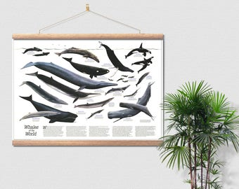 Great Whales Canvas Ready To Hang