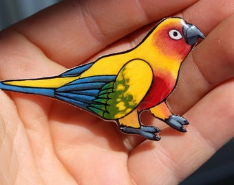 Sun Conure  Magnet for Fridge, car or locker: Great gift for bird lover