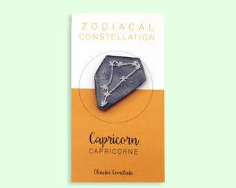 pin the Zodiac constellation - Capricorn