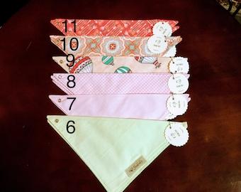 Dribble bandana bibs
